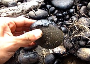 Oil on the river stones near Coca, Ecuador, May 2013